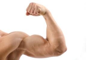 Close up on a bodybuilder biceps,shoulder